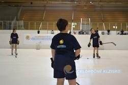 Hokejový tábor