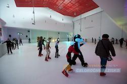 Magic Ice Expo Arena 2014